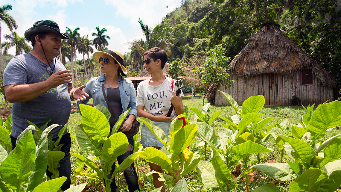 Tourist visiting a tobacco plantation in Vinales Valley, Pinar del Rio, Joanna Lumley's documentary film