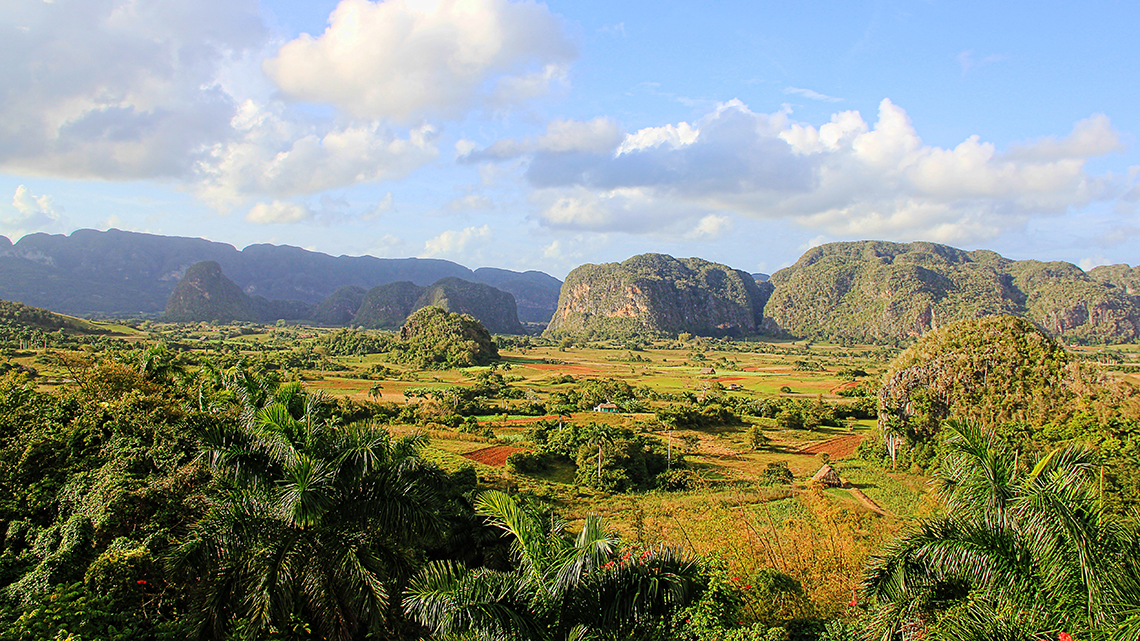 Agricultural fields protected by the giant mogotes of Vinales Valley