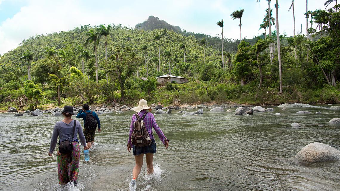 Trekking in Alejandro de Humboldt National Park