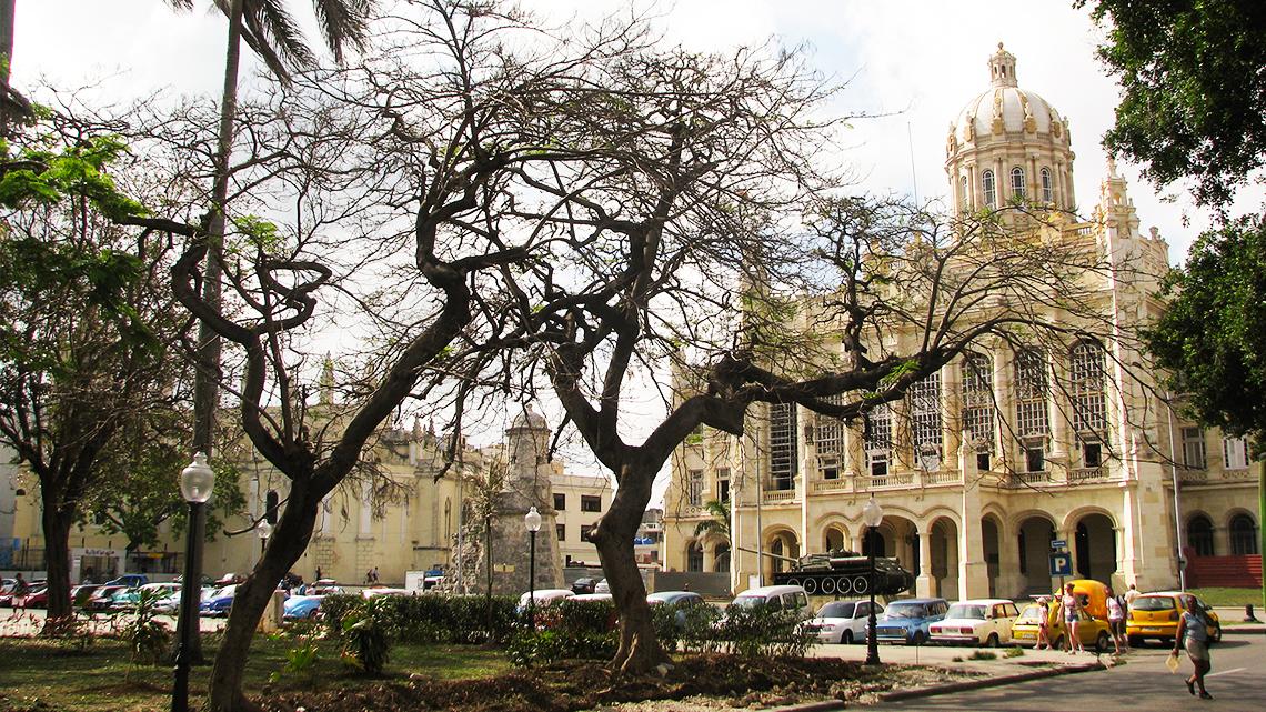 Palacio Presidencial (Presidential Palace)