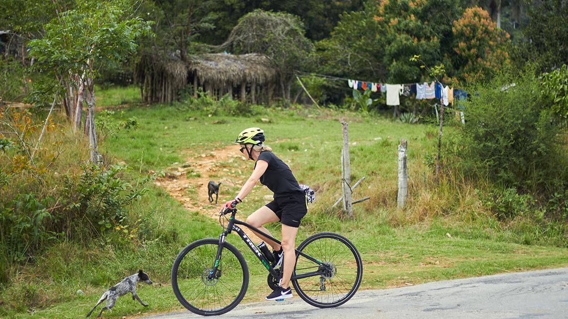Traveller cycling near La Terrazas in Pinar del Rio, Cuba