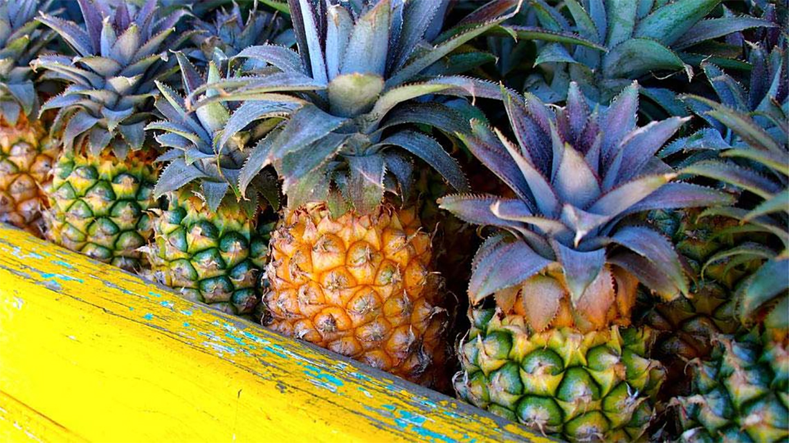 Cart full of pineapples seen in the streets of Antigua