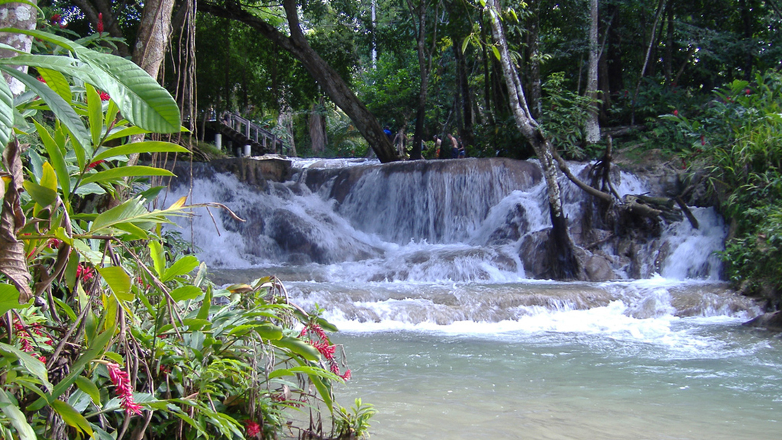 Make sure to take a dip at Dunns' River Falls